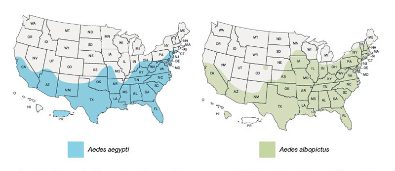 aedes aegypti and albopictus range in USA